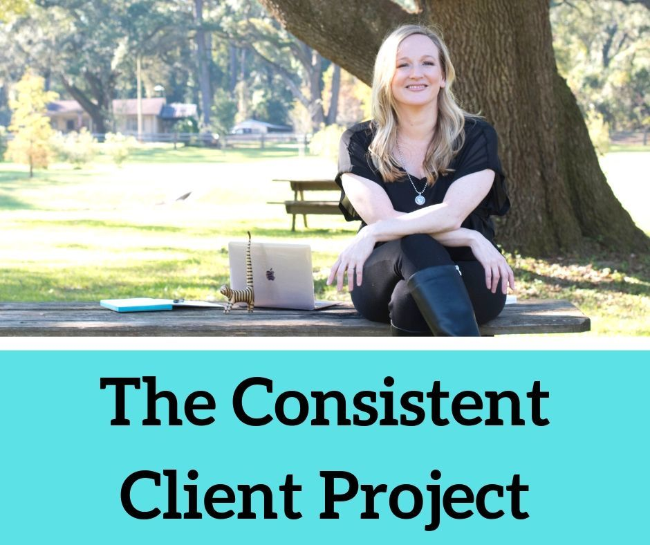 The-Consistent-Client-Project